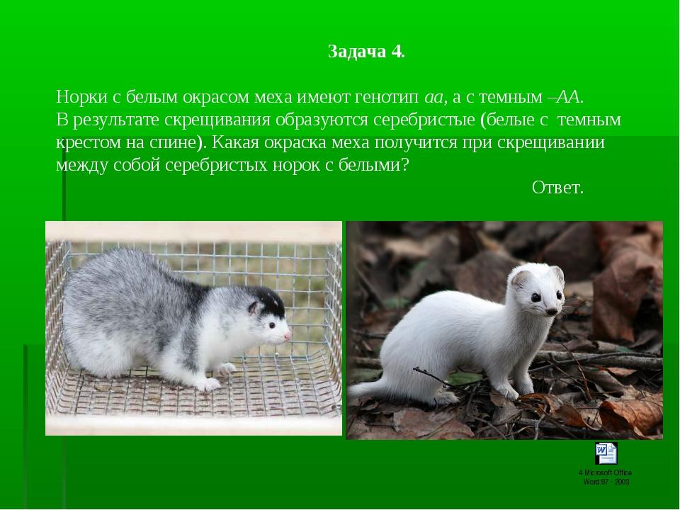 Задача 4. Норки с белым окрасом меха имеют генотип аа, а с темным –АА. В...