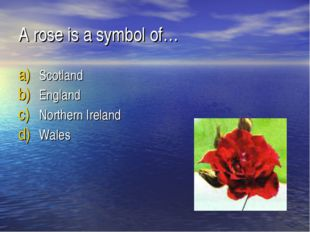 A rose is a symbol of… Scotland England Northern Ireland Wales