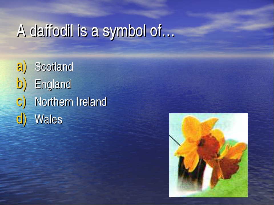 A daffodil is a symbol of… Scotland England Northern Ireland Wales
