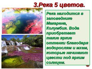 3.Река 5 цветов. Река находится в заповеднике Макарена, Колумбия. Вода приобр
