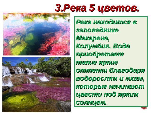 3.Река 5 цветов. Река находится в заповеднике Макарена, Колумбия. Вода приобр...
