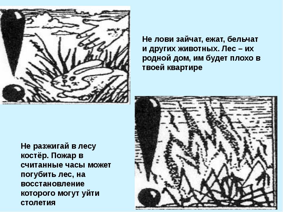 Не лови зайчат, ежат, бельчат и других животных. Лес – их родной дом, им буде...
