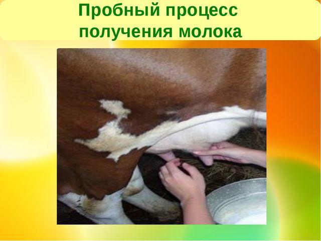 Пробный процесс получения молока