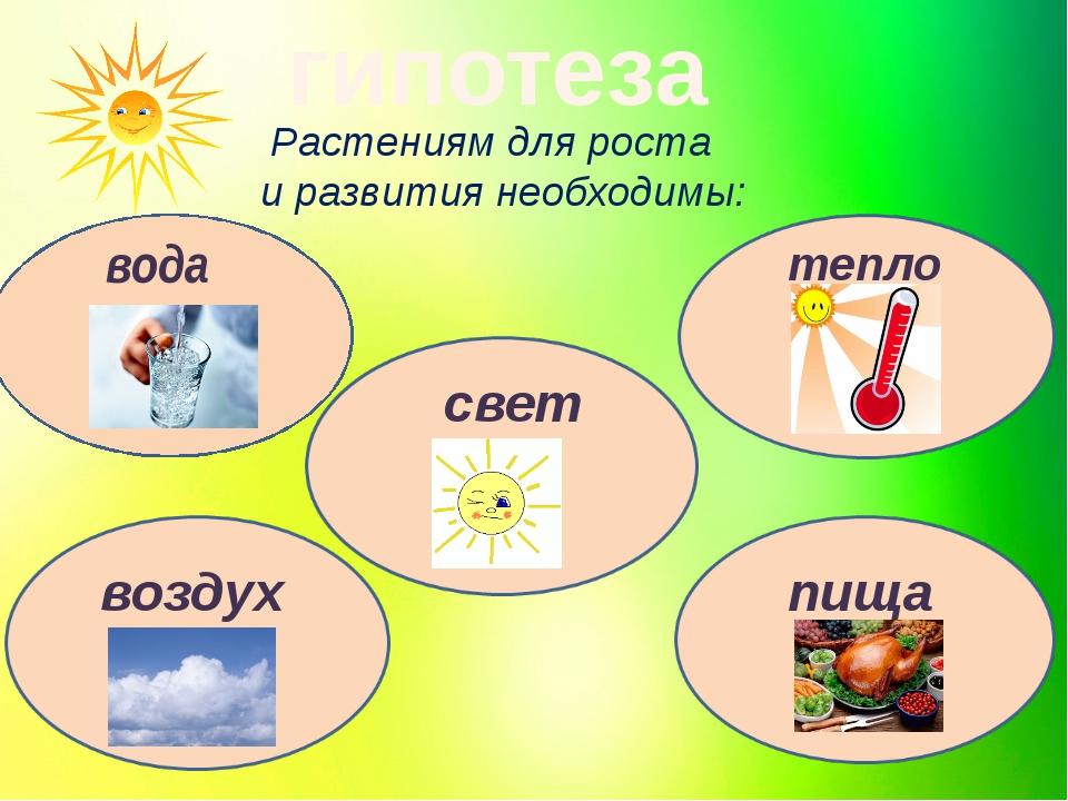 гипотеза Растениям для роста и развития необходимы: вода свет воздух пища те...