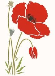233-giant-poppy1-C10.jpg