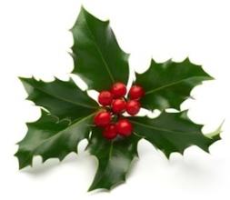 christmas-holly.jpg