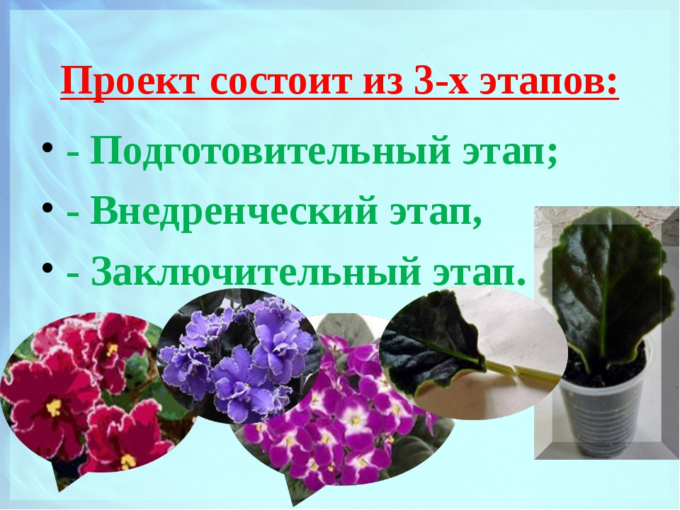 Проект состоит из 3-х этапов: - Подготовительный этап; - Внедренческий этап,...