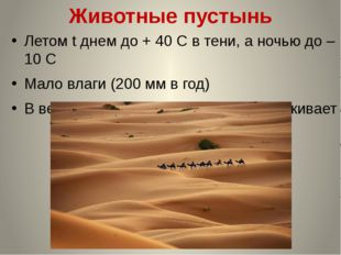 Животные пустынь Летом t днем до + 40 С в тени, а ночью до – 10 С Мало влаги