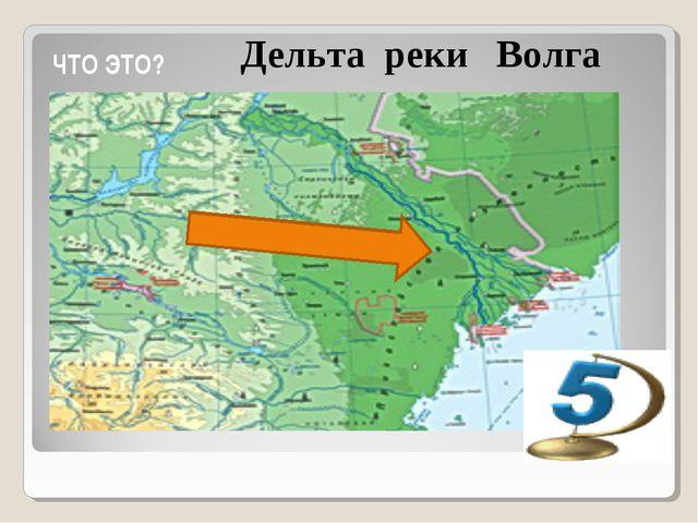 ЧТО ЭТО? Дельта реки Волга