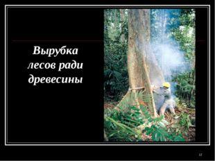 Вырубка лесов ради древесины *