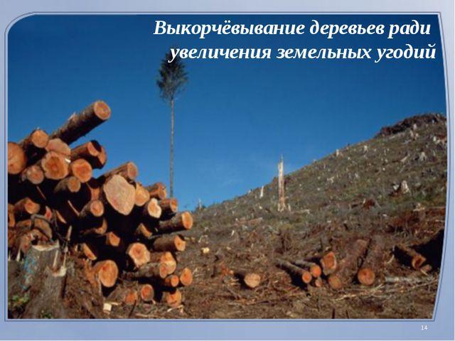 Выкорчёвывание деревьев ради увеличения земельных угодий *