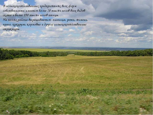 В сельскохозяйственных предприятиях всех форм собственности имеется более 78...