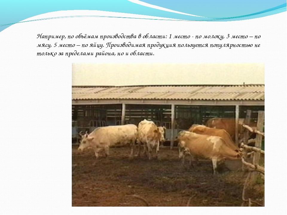 Например, по объёмам производства в области: 1 место - по молоку, 3 место – п...