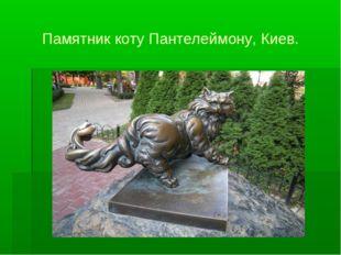 Памятник коту Пантелеймону, Киев.