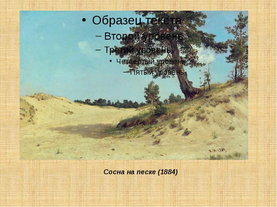 Сосна на песке (1884)