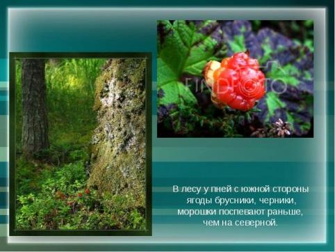 http://mypresentation.ru/documents/2a124fb51f5513f1b9bbc2aaa8957704/img6.jpg