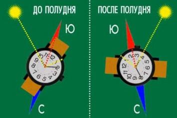 http://ribalych.ru/wp-content/uploads/2014/09/5023.jpg