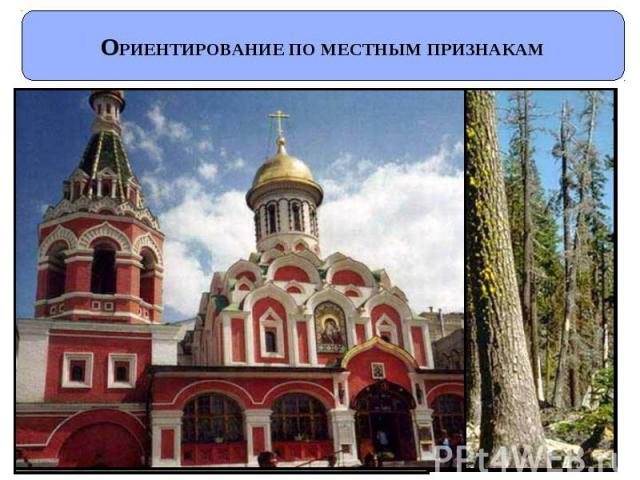 http://fs1.ppt4web.ru/images/1487/74662/640/img7.jpg