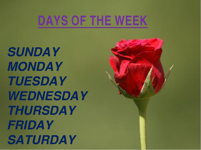 DAYS OF THE WEEK SUNDAY MONDAY TUESDAY WEDNESDAY THURSDAY FRIDAY SATURDAY Pag...