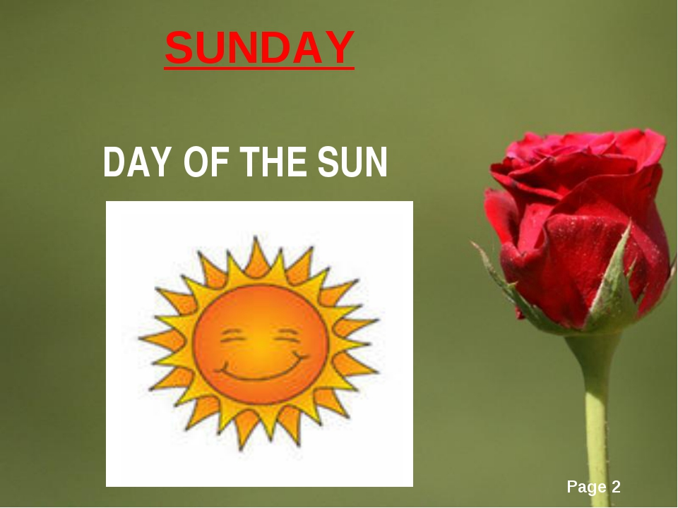 SUNDAY DAY OF THE SUN Page *