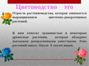 Отрасль растениеводства, которая занимается выращиванием цветочно-декоративны
