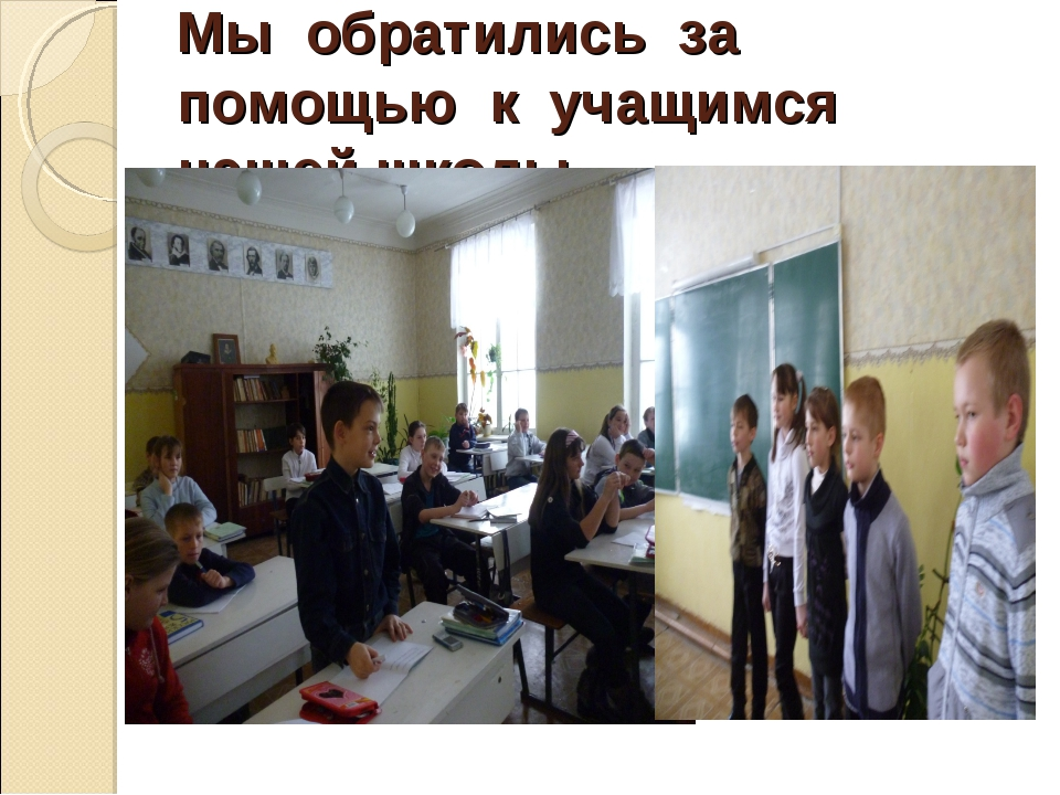 Мы обратились за помощью к учащимся нашей школы.