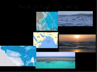 Филиппинское Аравийское Коралловое S-5726 тыс.км.кв. Макс. глуб.10265м S-4832