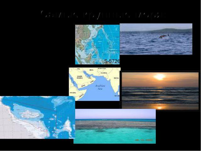 Филиппинское Аравийское Коралловое S-5726 тыс.км.кв. Макс. глуб.10265м S-4832...