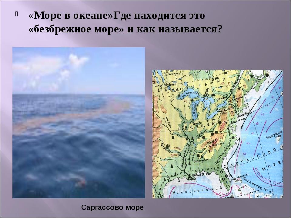 «Море в океане»Где находится это «безбрежное море» и как называется? Саргассо...
