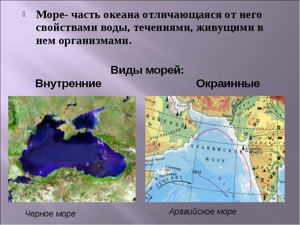 Море- часть океана отличающаяся от него свойствами воды, течениями, живущими...