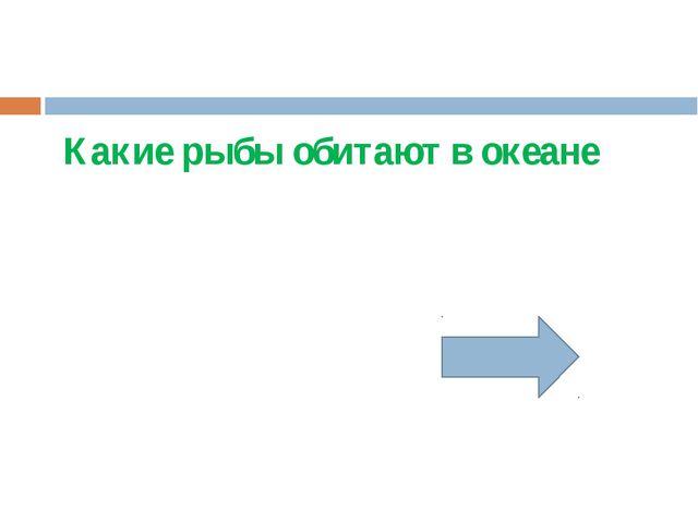 Подводные хребты названы именами русских ученых….