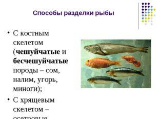 Способы разделки рыбы С костным скелетом (чешуйчатые и бесчешуйчатые породы –
