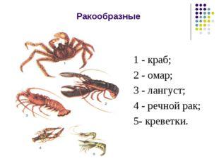 Ракообразные 1 - краб; 2 - омар; 3 - лангуст; 4 - речной рак; 5- креветки.