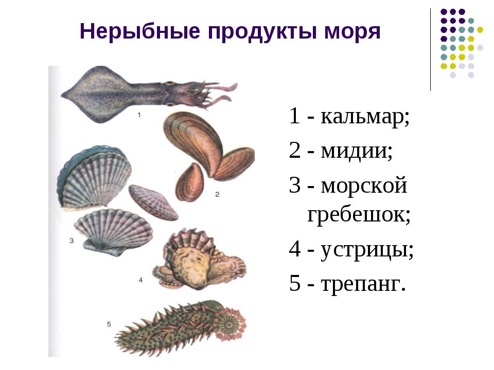 Нерыбные продукты моря 1 - кальмар; 2 - мидии; 3 - морской гребешок; 4 - устр...