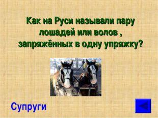 Как на Руси называли пару лошадей или волов , запряжённых в одну упряжку? Суп