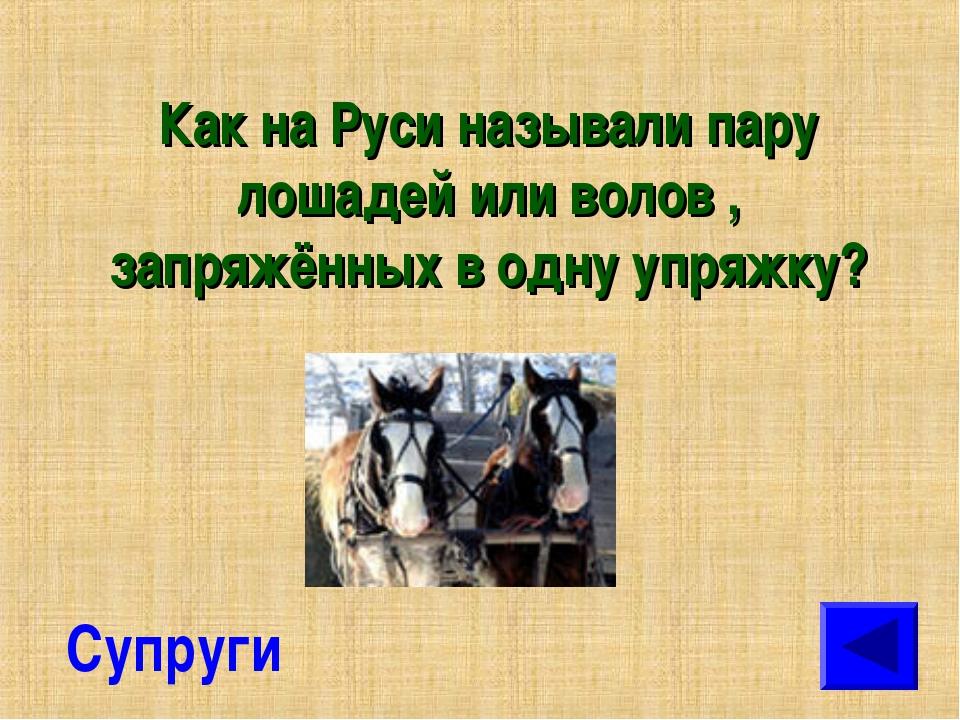 Как на Руси называли пару лошадей или волов , запряжённых в одну упряжку? Суп...