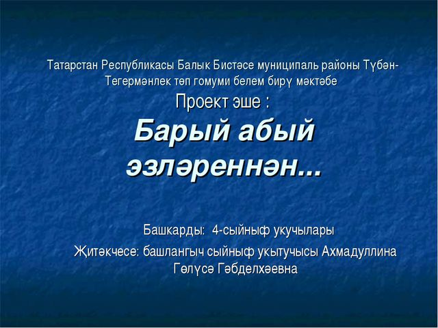 Татарстан Республикасы Балык Бистәсе муниципаль районы Түбән-Тегермәнлек төп...