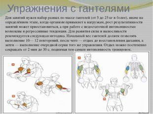 Упражнения с гантелями Для занятий нужен набор разных по массе гантелей (от 5