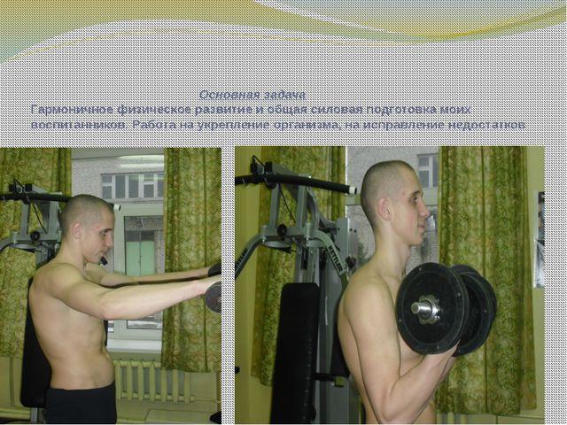 Основная задача Гармоничное физическое развитие и общая силовая подготовка м...