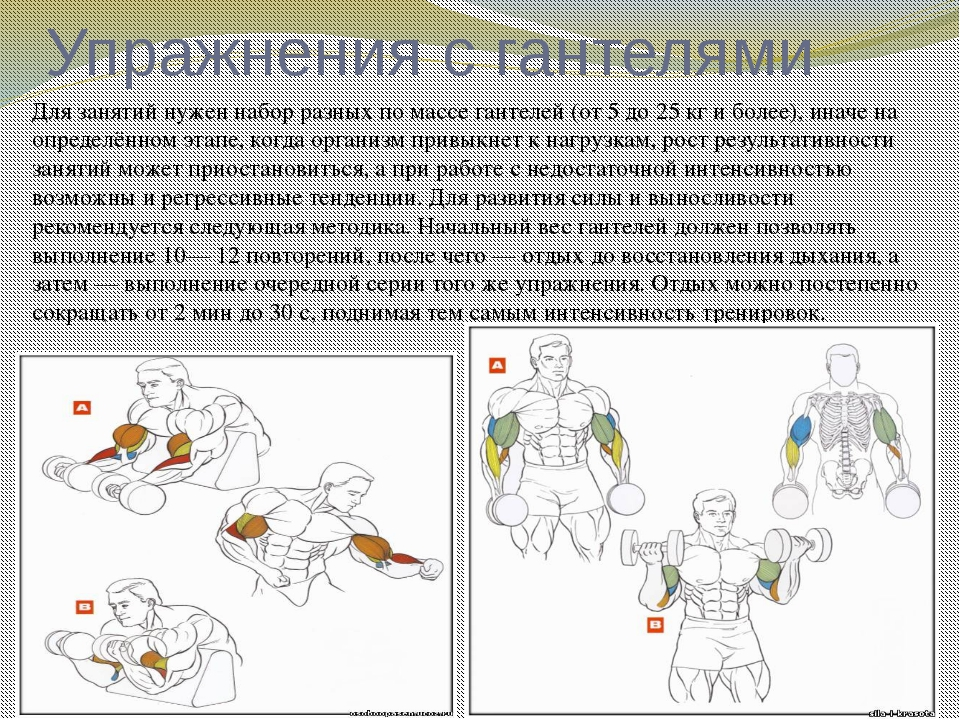 набережная комплекс упражнений по физкультуре с картинками стала дважды