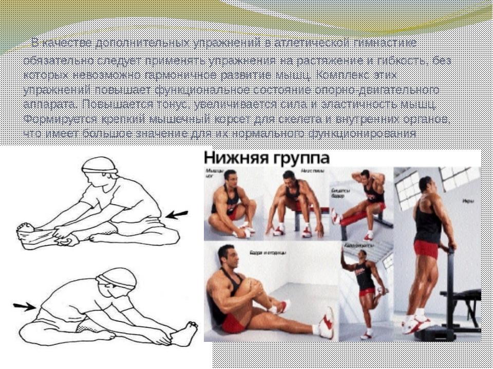 В качестве дополнительных упражнений в атлетической гимнастике обязательно с...
