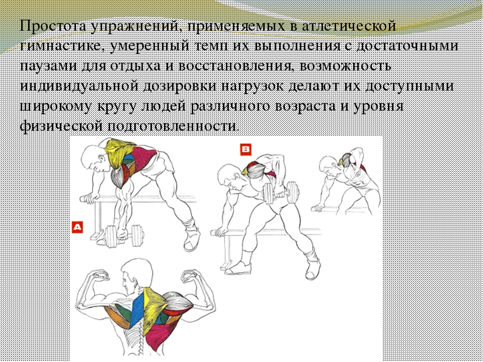 Простота упражнений, применяемых в атлетической гимнастике, умеренный темп их...