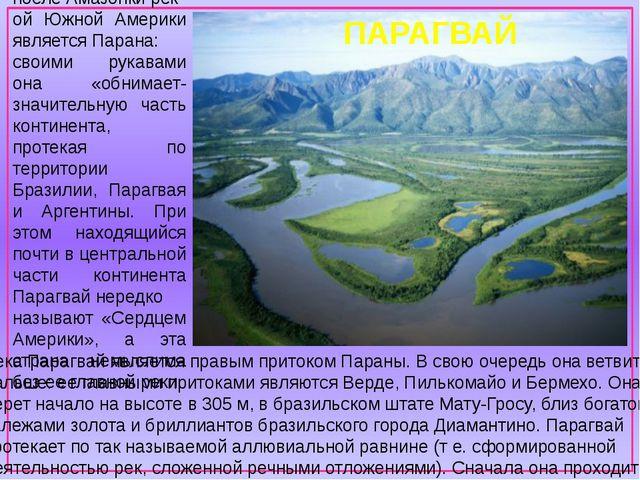 Река Парагвай является правым притоком Параны. В свою очередь она ветвится д...