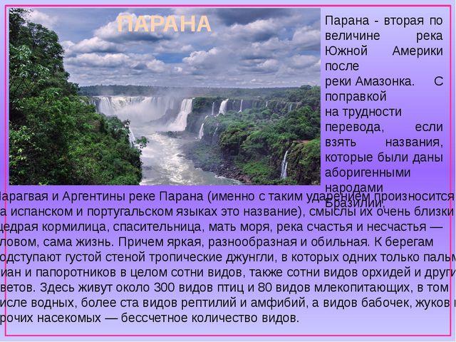Парагвая иАргентины реке Парана (именно стаким ударением произносится наи...