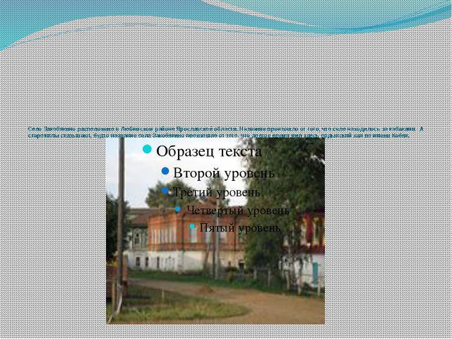 Село Закобякино расположено в Любимском районе Ярославской области. Название...