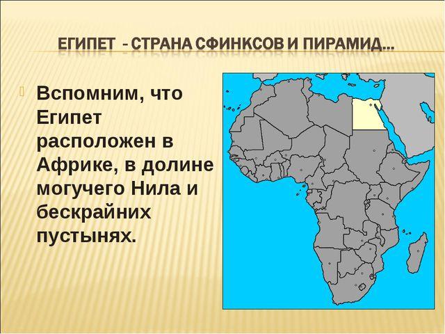 Вспомним, что Египет расположен в Африке, в долине могучего Нила и бескрайних...