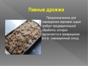 Пивные дрожжи Предназначенное для пивоварения зерновое сырьё требует предвар