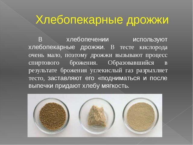 Хлебопекарные дрожжи В хлебопечении используют хлебопекарные дрожжи. В тесте...