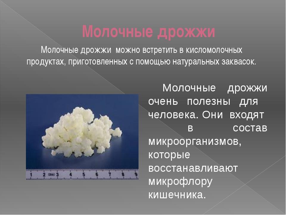 Молочные дрожжи Молочные дрожжи можно встретить в кисломолочных продуктах,...