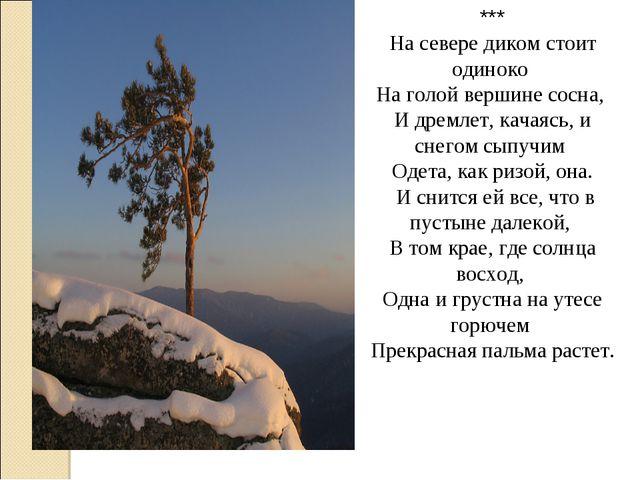 *** На севере диком стоит одиноко На голой вершине сосна, И дремлет, качаясь,...